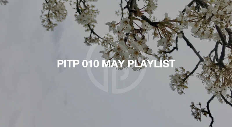 Past Inside the Present Ambient Label PITP playlist kyle bobby dunn rafael anton irisarri tyresta ian hawgood hotel neon hilyard warmth erinome lp ambient drone